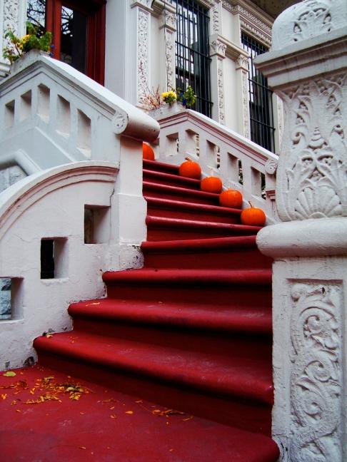 Fall in NY
